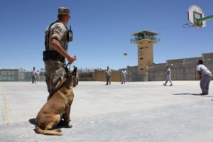 prison yard with inmates, guard, and dog
